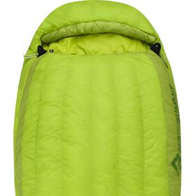 Sea to Summit Ascent AC I Saco de Dormir Normal, verde
